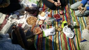 Summer Together Fun Park Picnic Outdoors Meal